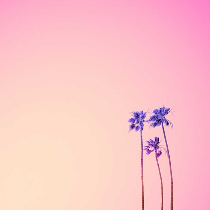 Candy-Colored-Minimalism-Photography-31