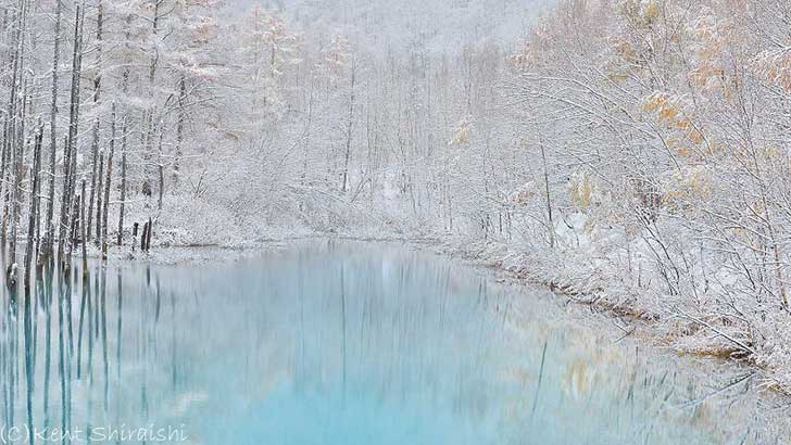 The-Most-Beautiful-Pond-in-the-World-15__880