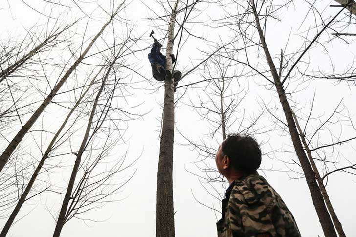 armless-man-and-his-blind-friend-tree