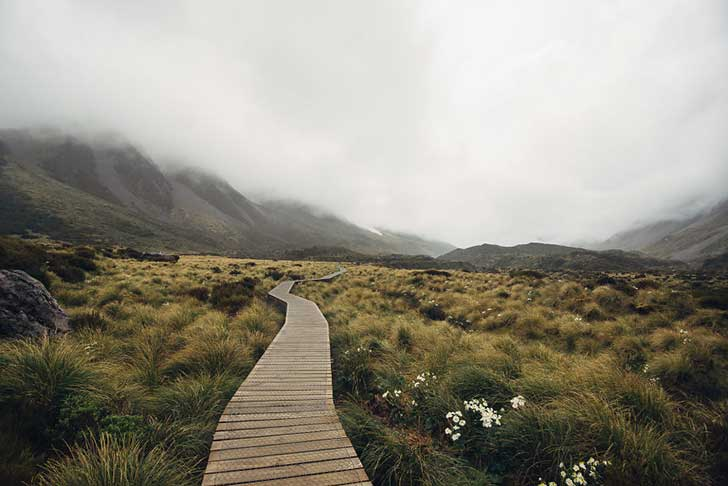 i-spent-a-year-exploring-new-zealand-to-bring-back-these-photos-and-it-blew-my-mind-27__880