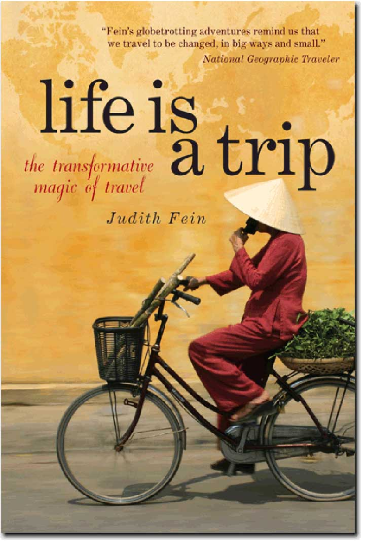 book_cover-life-trip