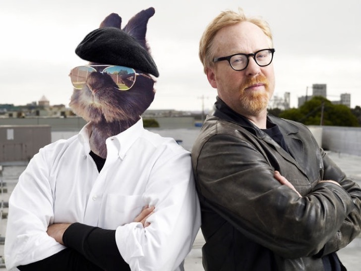 mythbusters-bunny-5811fc09c43a0__700