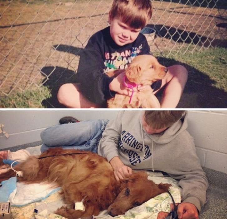 before-after-dogs-growing-up-together-with-owners-12-58256f61c48db__700-2