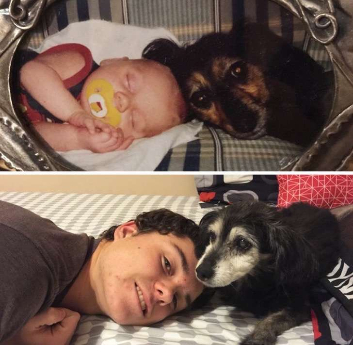 before-after-dogs-growing-up-together-with-owners-17-58256f6f13f4f__700-2