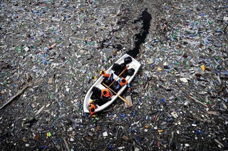 newly-discovered-amazonian-bacteria-is-secret-key-biodegrading-plastic.w654