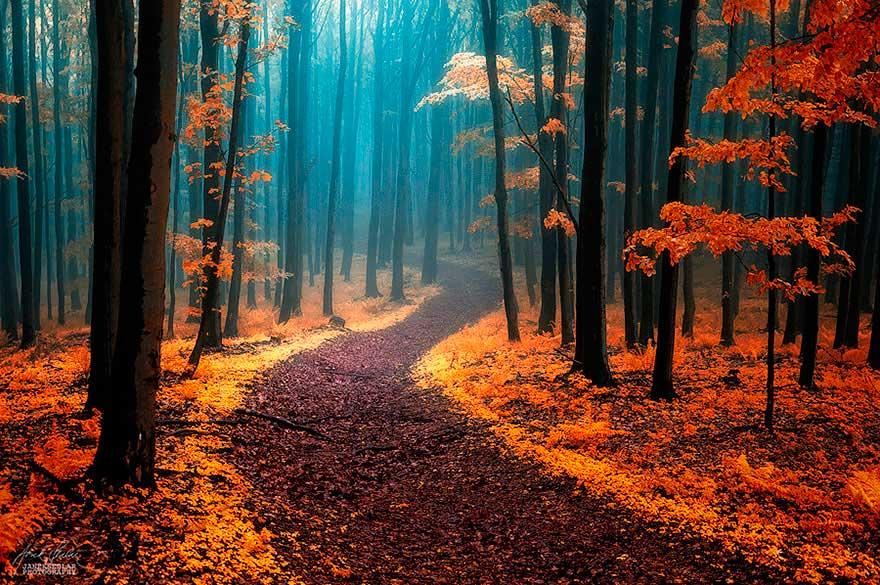 28 mágicos caminos que piden a gritos ser recorridos (Y que los ...