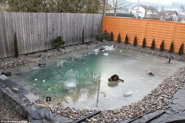 pool-6-850x568 2